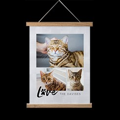 Hanging canvas print with personalized photos of pet cats