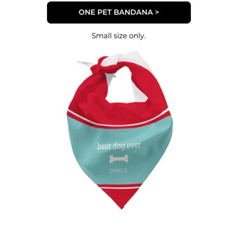 One Pet Bandana