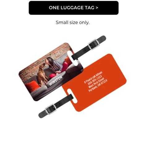 One Luggage Tag