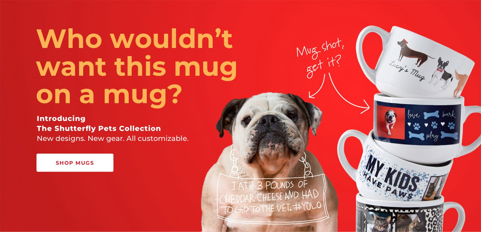 Gifts for Pets | Shutterfly